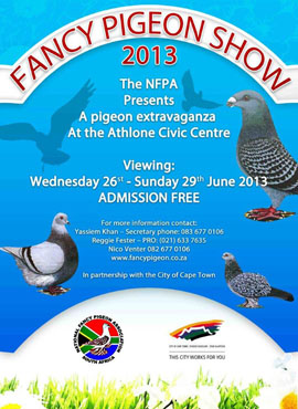 fancy pigeon show 2013 - 1